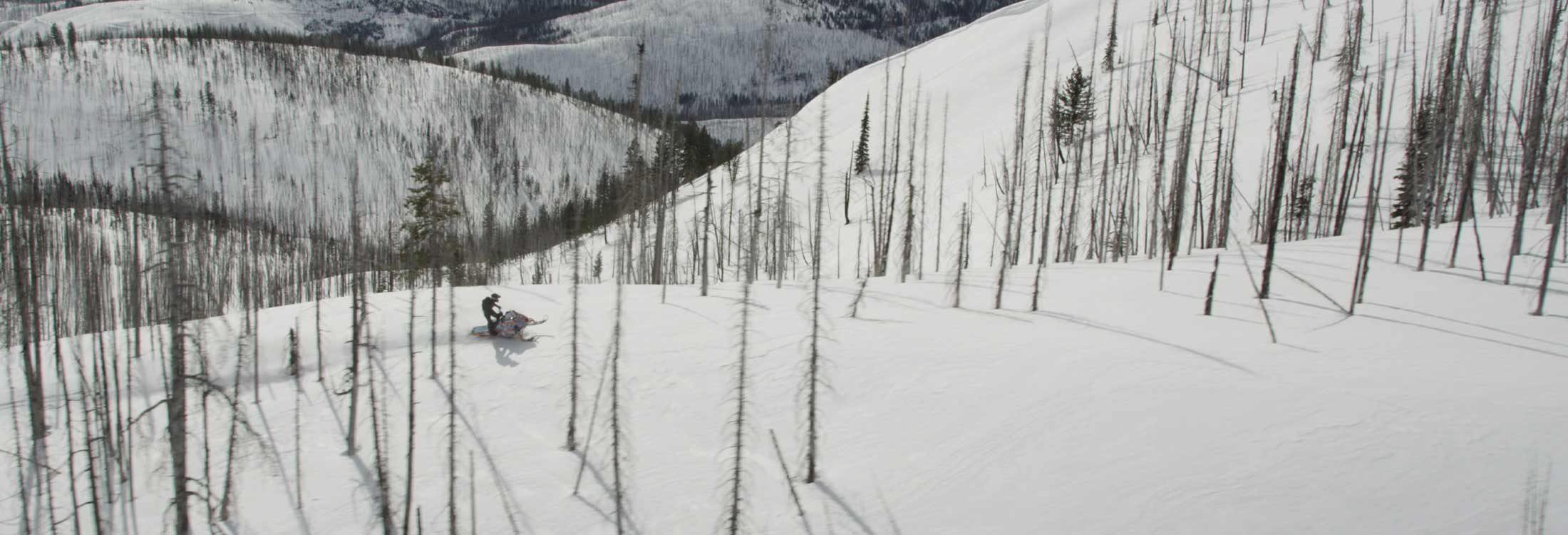 Win a snowmobiling trip to Montana.